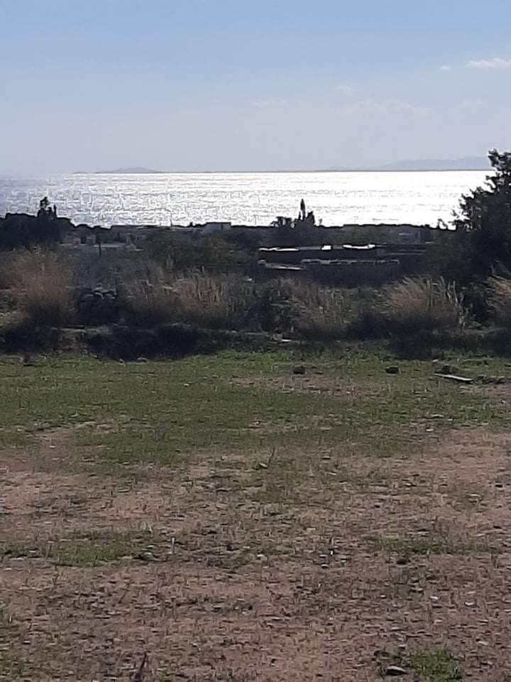 (For Sale) Land Plot || Cyclades/Paros - 5.000 Sq.m, 750.000€