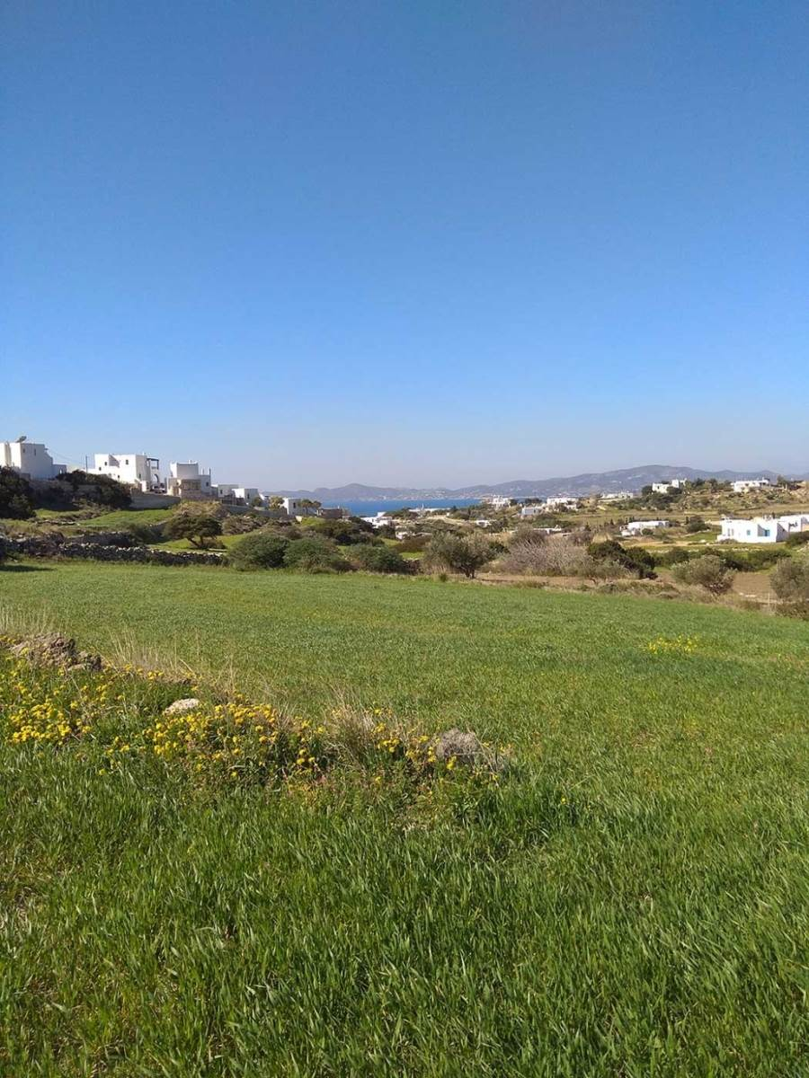 (For Sale) Land Plot || Cyclades/Paros - 4.000 Sq.m, 250.000€