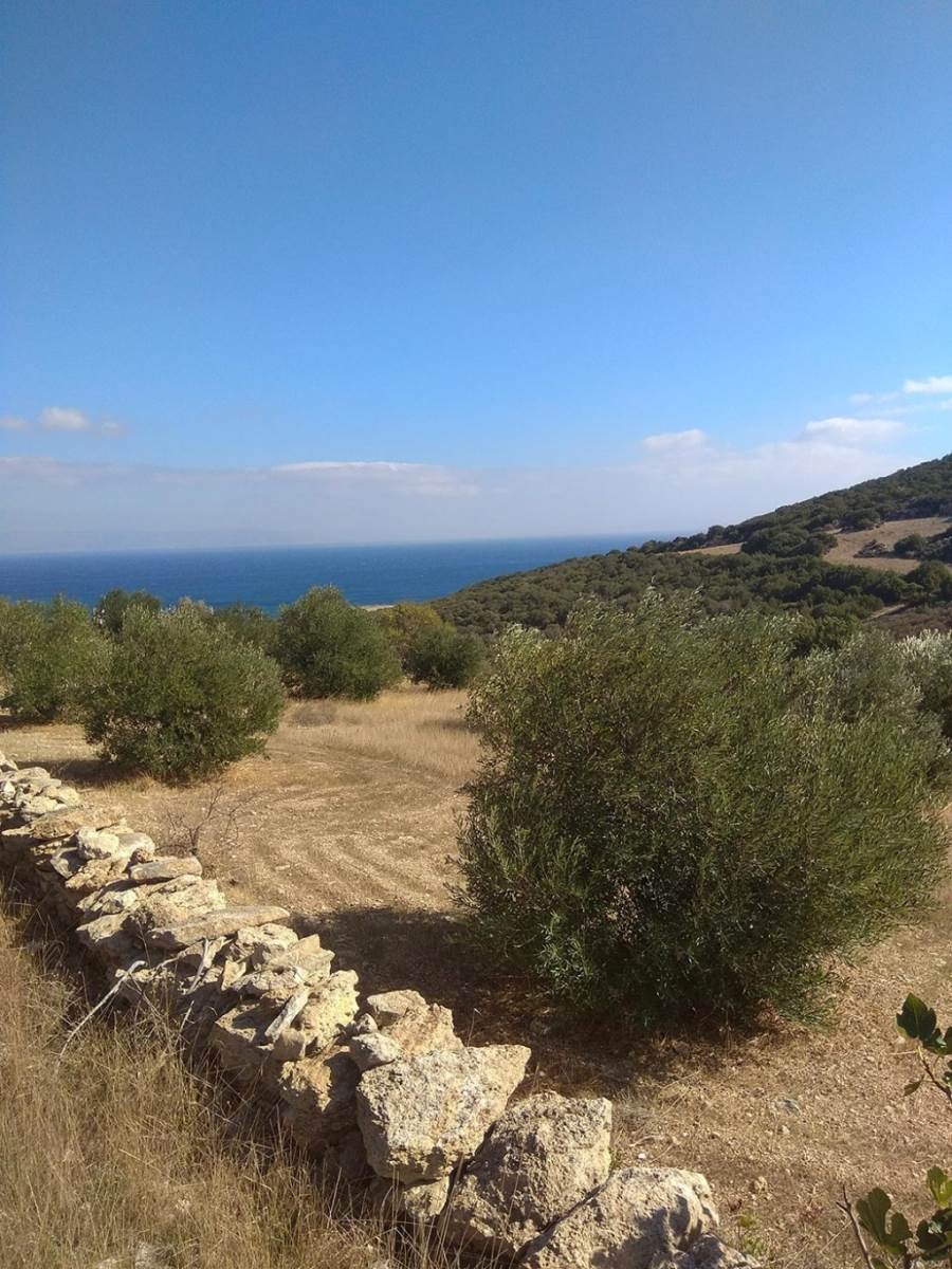 (For Sale) Land Plot || Cyclades/Paros - 5.600 Sq.m, 280.000€